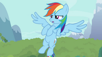 Rainbow flaps wings lightly S4E16