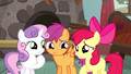 Cutie Mark Crusaders caught in a lie S5E6.png