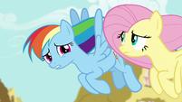 "Rainbow Dash ""you've been kind of quiet"" S6E11"