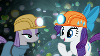 "Rarity ""what are you doing now?"" S7E4"