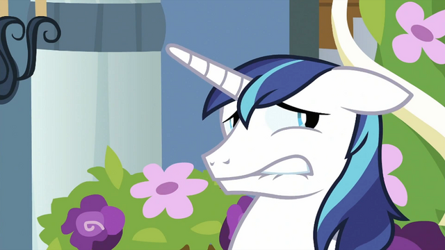 File:Shining Armor face S2E25.png