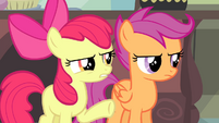 "Apple Bloom ""about this for weeks, right?"" S4E19"