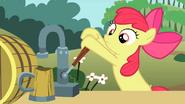 Apple Bloom pours cider again S2E15