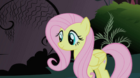 Fluttershy after defeating the Cockatrice S1E17