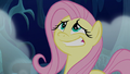 Fluttershy giving a nervous grin S6E15.png