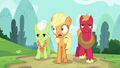 Applejack notices something near the hospital S6E23.png