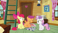 Apple Bloom 'Woooow' S3E06.png