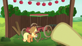Applejack polishing the traditional cart S6E14.png