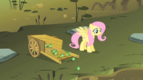 Fluttershy setting some frogs go S1E15