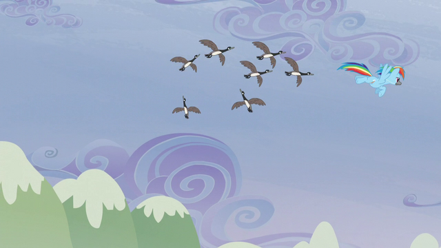 File:The birds following Rainbow S5E5.png