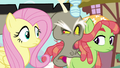 Discord interrupts Fluttershy and Tree Hugger S5E7.png
