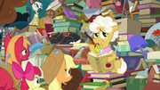 """Goldie Delicious """"Buttercup was just a nickname"""" S7E13"""