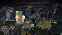 A lot of cats and stuffs in Goldie's house S4E09