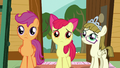 CMC and Zipporwhill feel sorry for Sweetie Belle S7E6.png