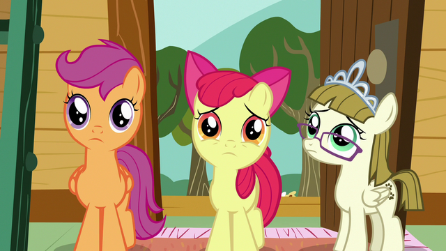 File:CMC and Zipporwhill feel sorry for Sweetie Belle S7E6.png