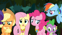 Fluttershy 'It is probably for the best' S4E02