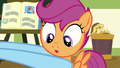 Rainbow Dash picking up Scootaloo S7E7.png