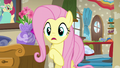 "Fluttershy ""don't you remember last time?"" S6E11.png"