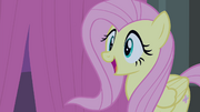 Fluttershy happy S4E14