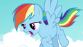 """Rainbow """"no other plans for the rest of my life"""" S4E21.png"""