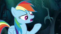 "Rainbow Dash ""you won't ever do anything"" S6E11"