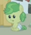 Apple Bud closeup ID S3E8