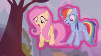 Fluttershy and Rainbow floating S4E16