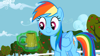 Rainbow Dash for you S02E15