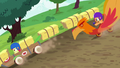 Apple Bloom and Scootaloo race in new carts S6E14.png