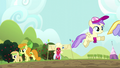 Orchard Blossom approaches the mud puddle S5E17.png