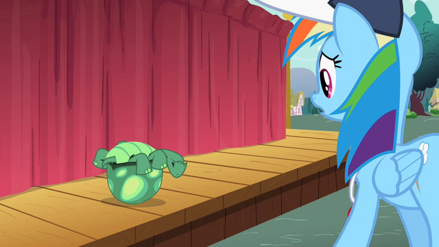 File:Rainbow Dash sees Tank upside down S2E07.png