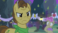 Grand Pear forcing Pear Butter to choose S7E13.png
