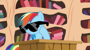 Rainbow wearing sunglasses S4E21.png