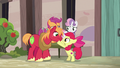 Apple Bloom encouraging Big McIntosh S7E8.png