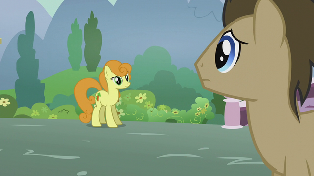 File:Golden Harvest and Dr. Hooves confused S5E18.png