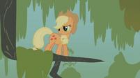 Applejack stuck in a tree branch S1E09