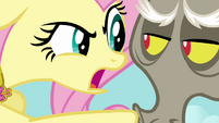 Fluttershy threatens Discord with the Stare S03E10