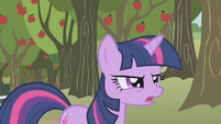 Twilight Sparkle frustrated S01E04