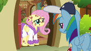 Fluttershy has fake ponypox S2E22.png