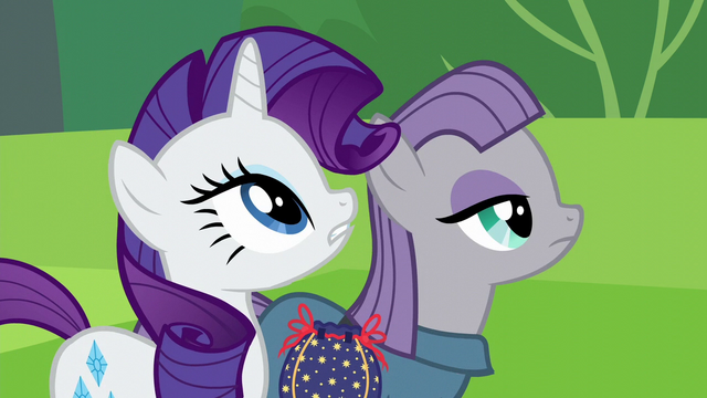 File:Rarity and Maud Pie looking up S6E3.png