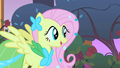 Fluttershy elated to hear a meadowlark S1E26.png