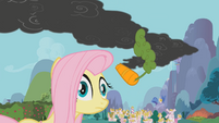 Fluttershy hit by carrot S1E7