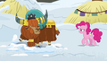 Pinkie Pie approaching Prince Rutherford S7E11.png