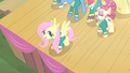 Fluttershy about to fly S4E14.png