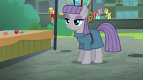 Maud Pie nearly at the sidewalk S6E3