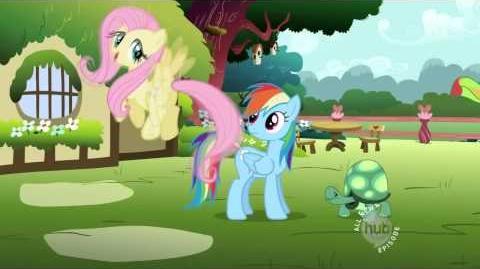 My Little Pony A amizade é mágica - Canção - Achar um animal de estimação - HD