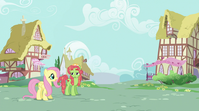 File:Fluttershy and Tree Hugger confused S5E7.png
