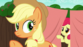 Apple Bloom peeks behind the curtain S6E14.png