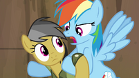 Rainbow Dash 'you can flap too, ya know' S4E04