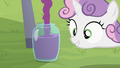 Sweetie Belle looking at jar being filled with grape juice S2E05.png